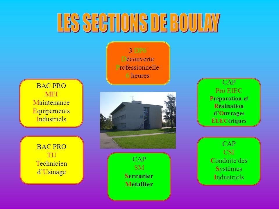 LES SECTIONS DE BOULAY 3 DP6 Découverte Professionnelle 6 heures
