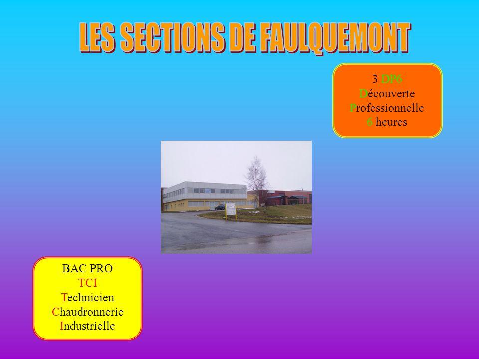 LES SECTIONS DE FAULQUEMONT