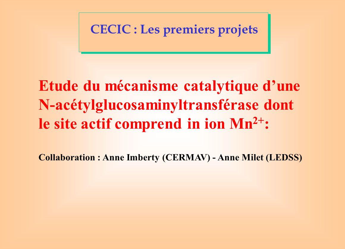 CECIC : Les premiers projets