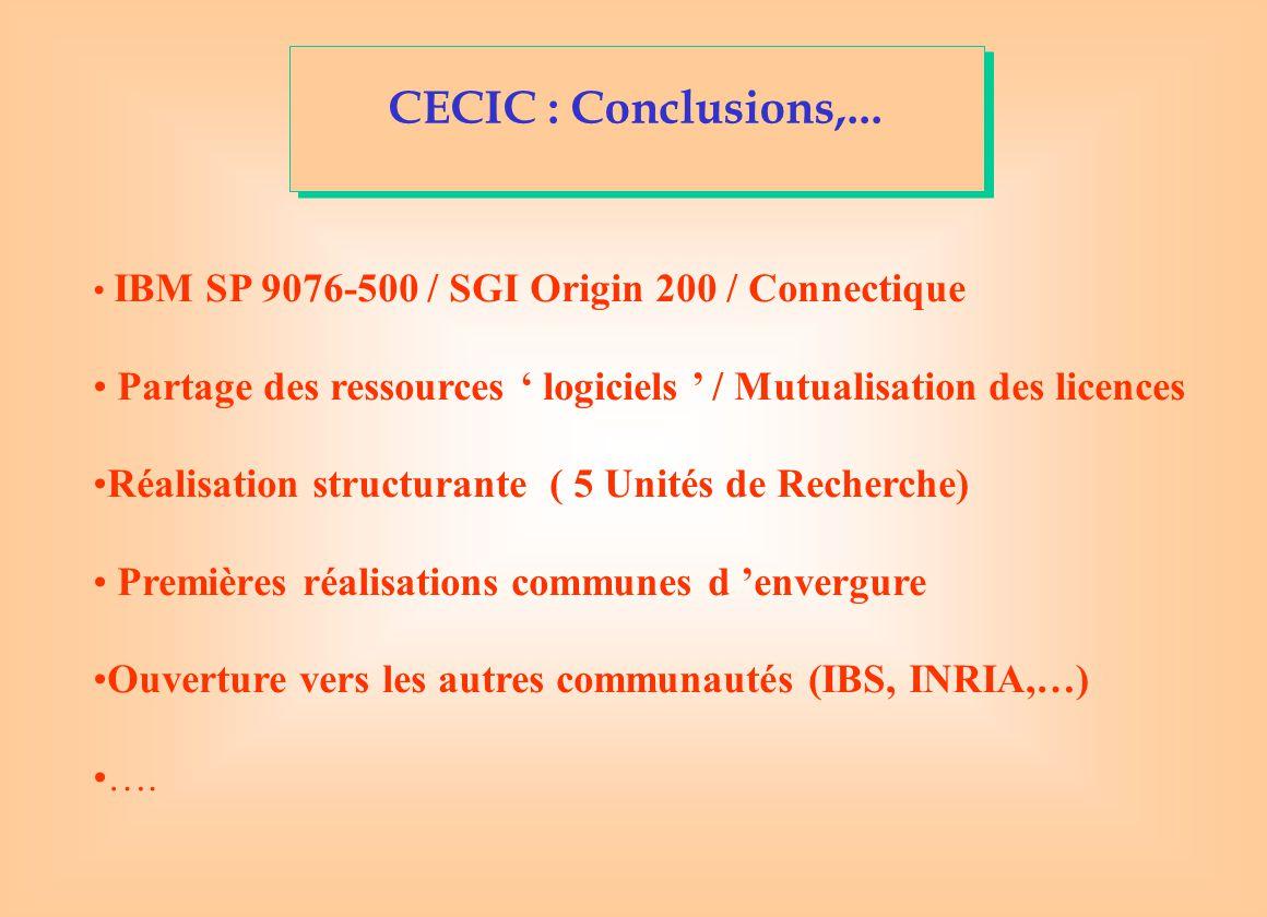 CECIC : Conclusions,... IBM SP 9076-500 / SGI Origin 200 / Connectique. Partage des ressources ' logiciels ' / Mutualisation des licences.