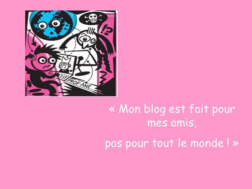 « Mon blog est fait pour mes amis,