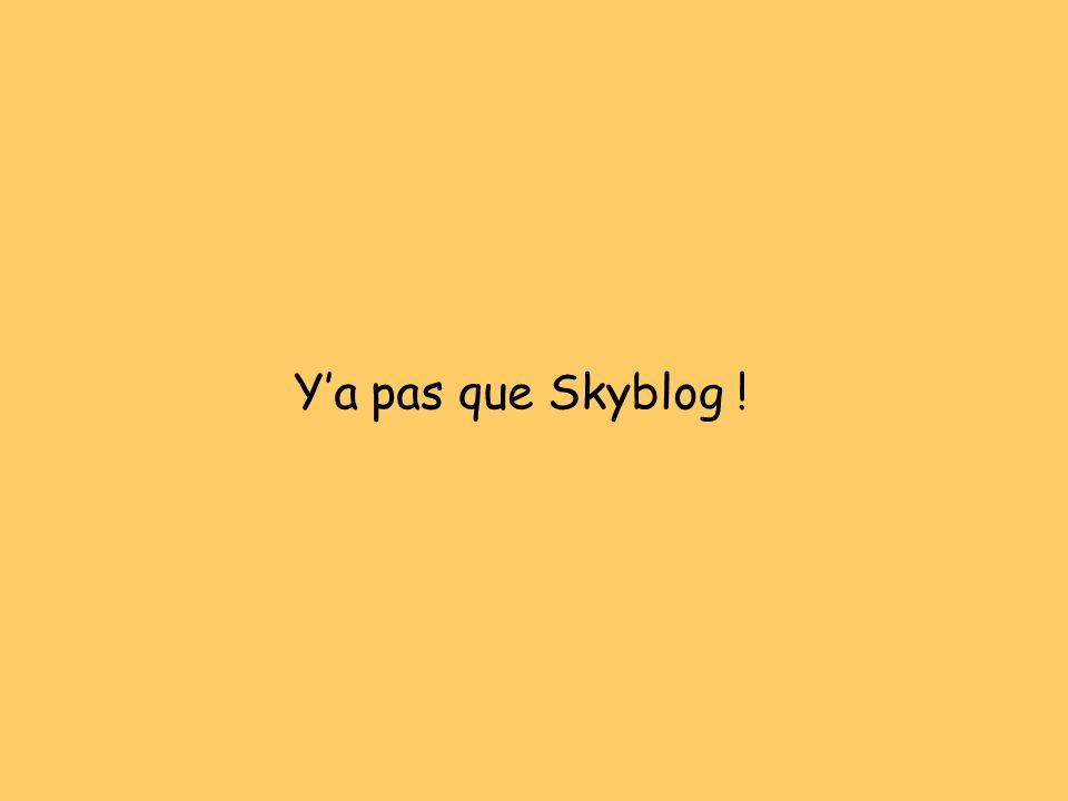 Y'a pas que Skyblog !
