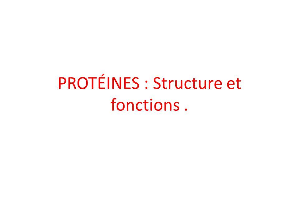 PROTÉINES : Structure et fonctions .