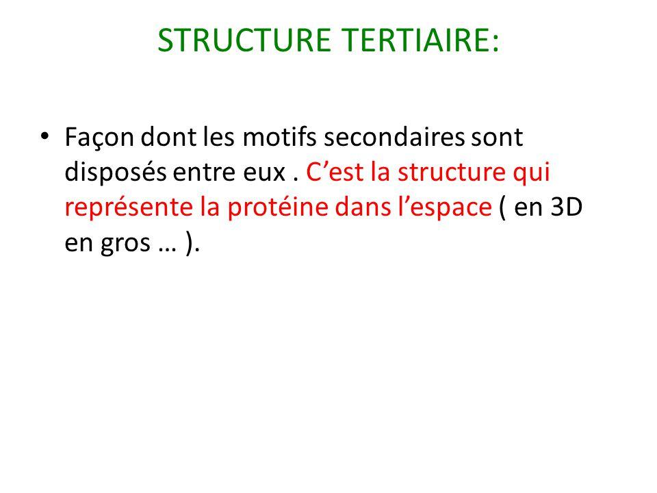STRUCTURE TERTIAIRE: