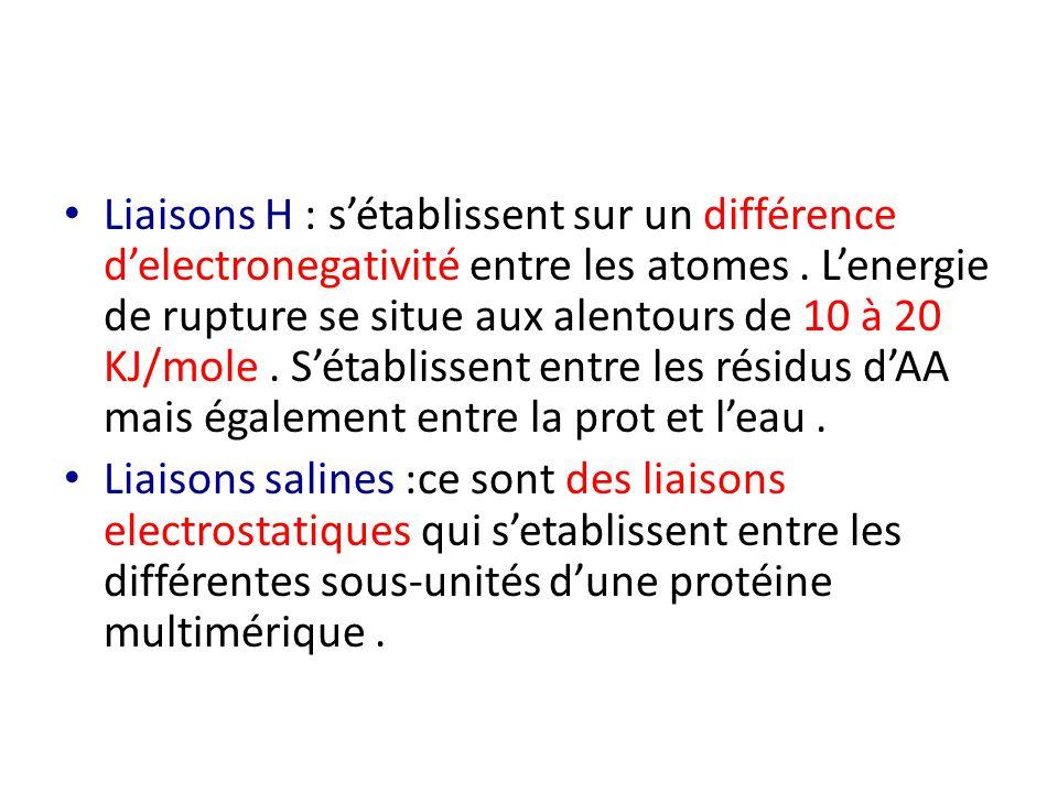 Liaisons H : s'établissent sur un différence d'electronegativité entre les atomes . L'energie de rupture se situe aux alentours de 10 à 20 KJ/mole . S'établissent entre les résidus d'AA mais également entre la prot et l'eau .