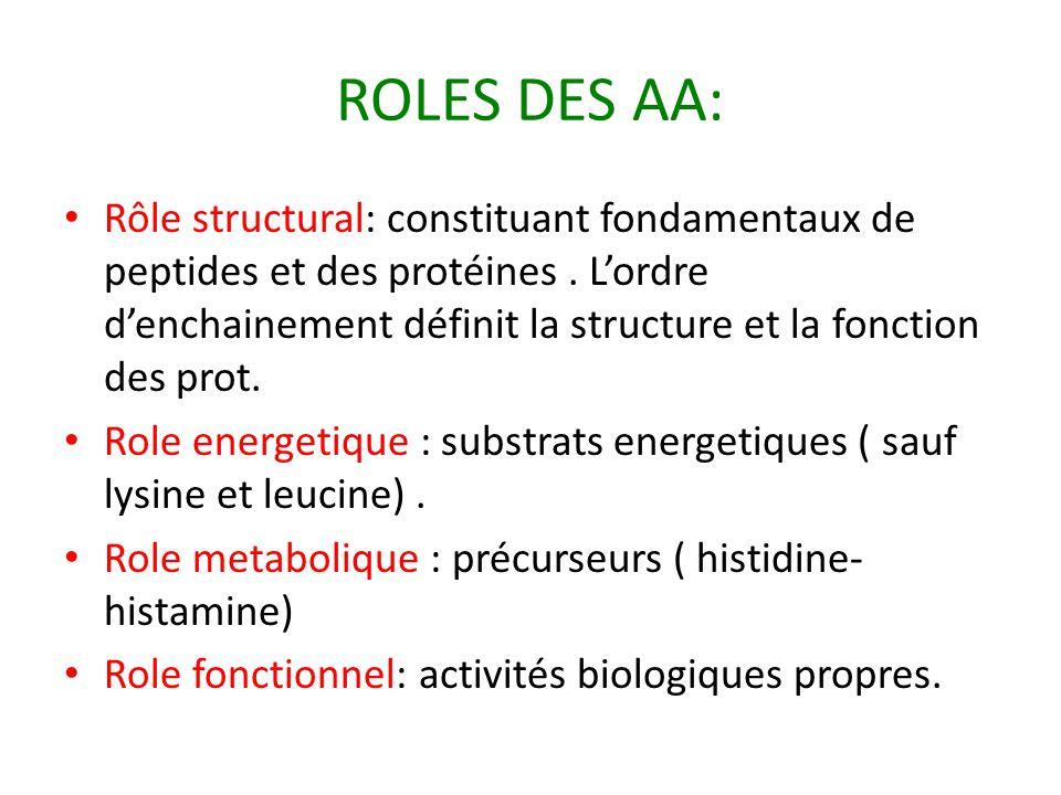 ROLES DES AA: