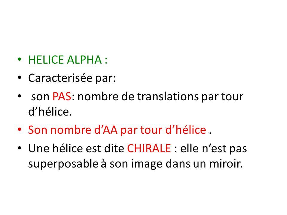 HELICE ALPHA : Caracterisée par: son PAS: nombre de translations par tour d'hélice. Son nombre d'AA par tour d'hélice .