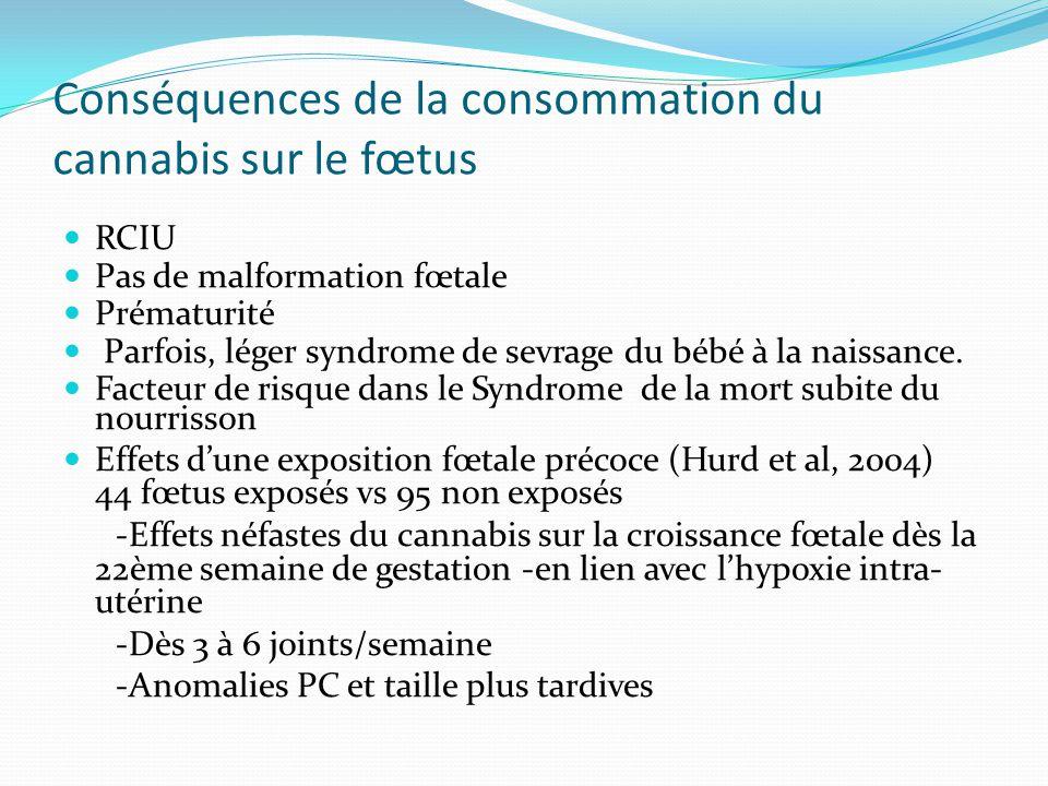 Conséquences de la consommation du cannabis sur le fœtus