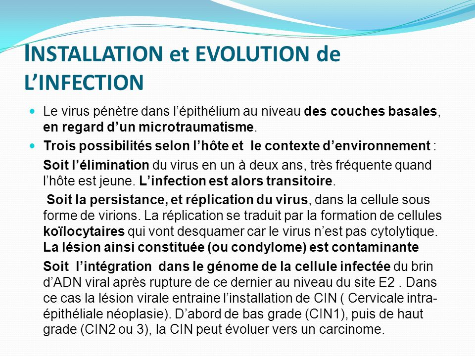 INSTALLATION et EVOLUTION de L'INFECTION