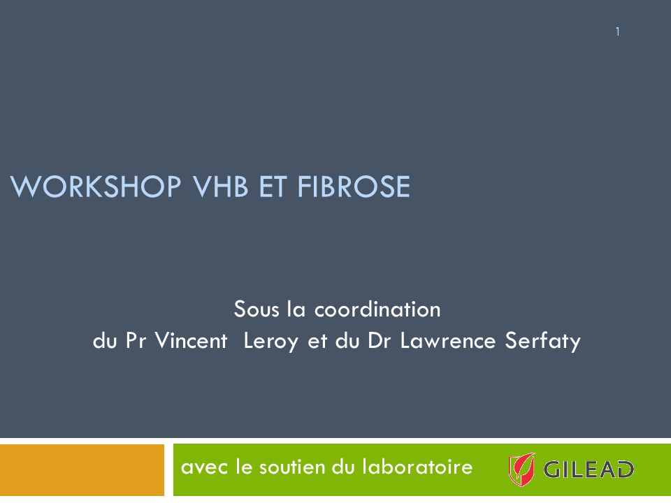WORKSHOP VHB ET FIBROSE