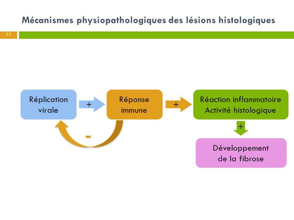 Mécanismes physiopathologiques des lésions histologiques