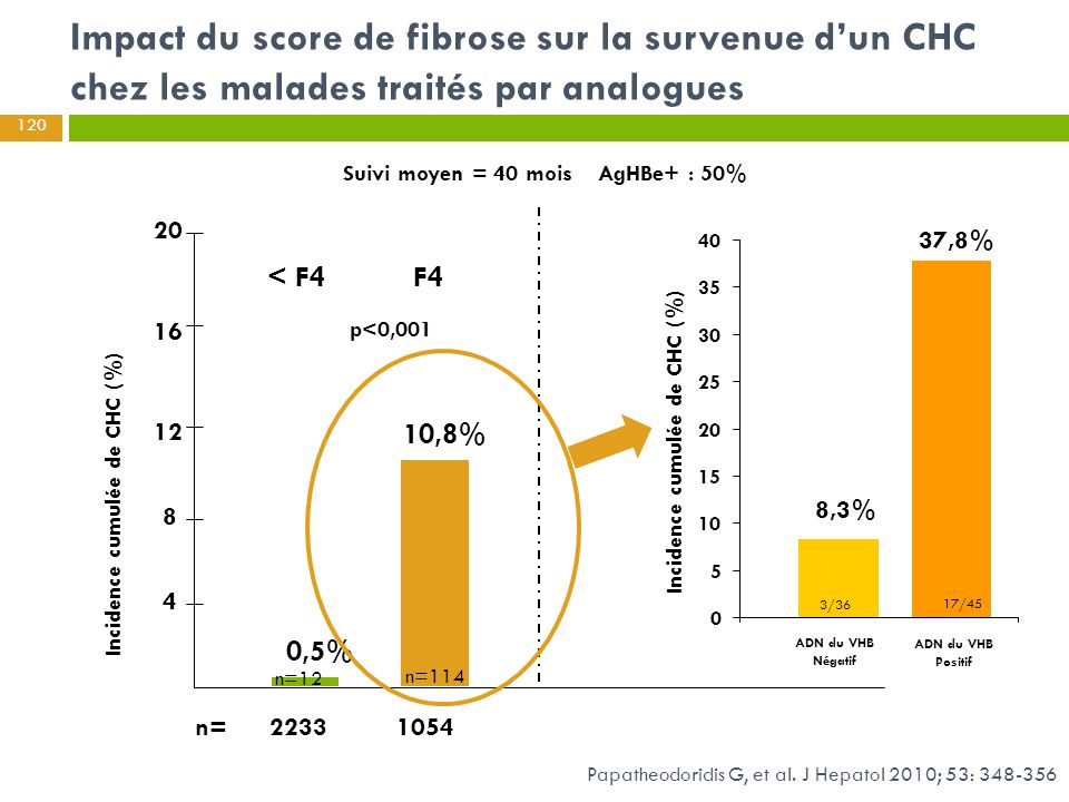 Impact du score de fibrose sur la survenue d'un CHC chez les malades traités par analogues