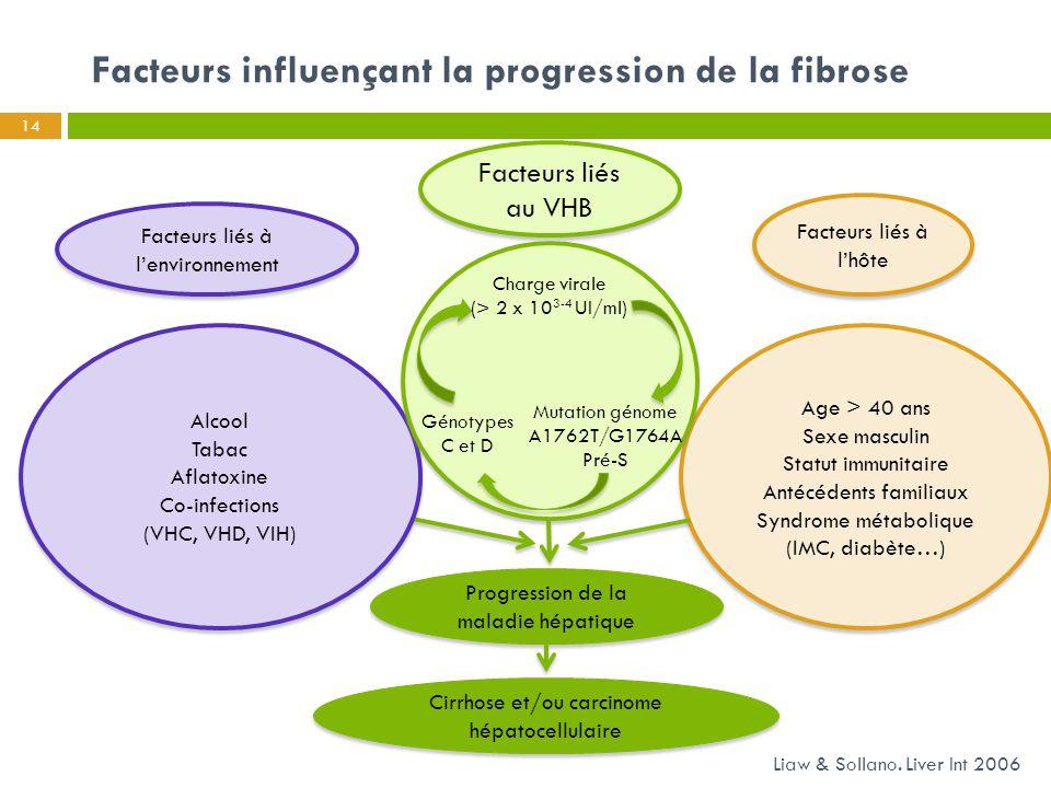 Facteurs influençant la progression de la fibrose