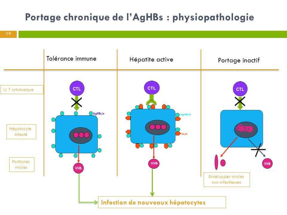 Portage chronique de l'AgHBs : physiopathologie