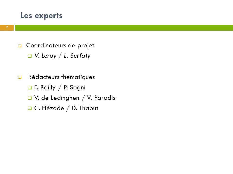 Les experts Coordinateurs de projet V. Leroy / L. Serfaty