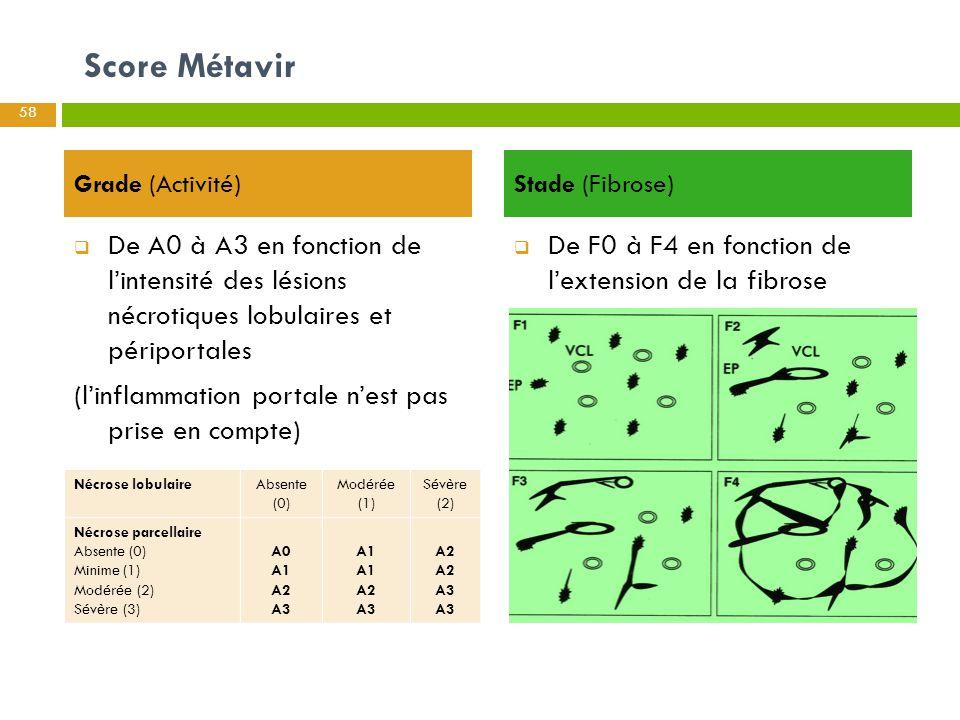 Score Métavir Grade (Activité) Stade (Fibrose) De A0 à A3 en fonction de l'intensité des lésions nécrotiques lobulaires et périportales.