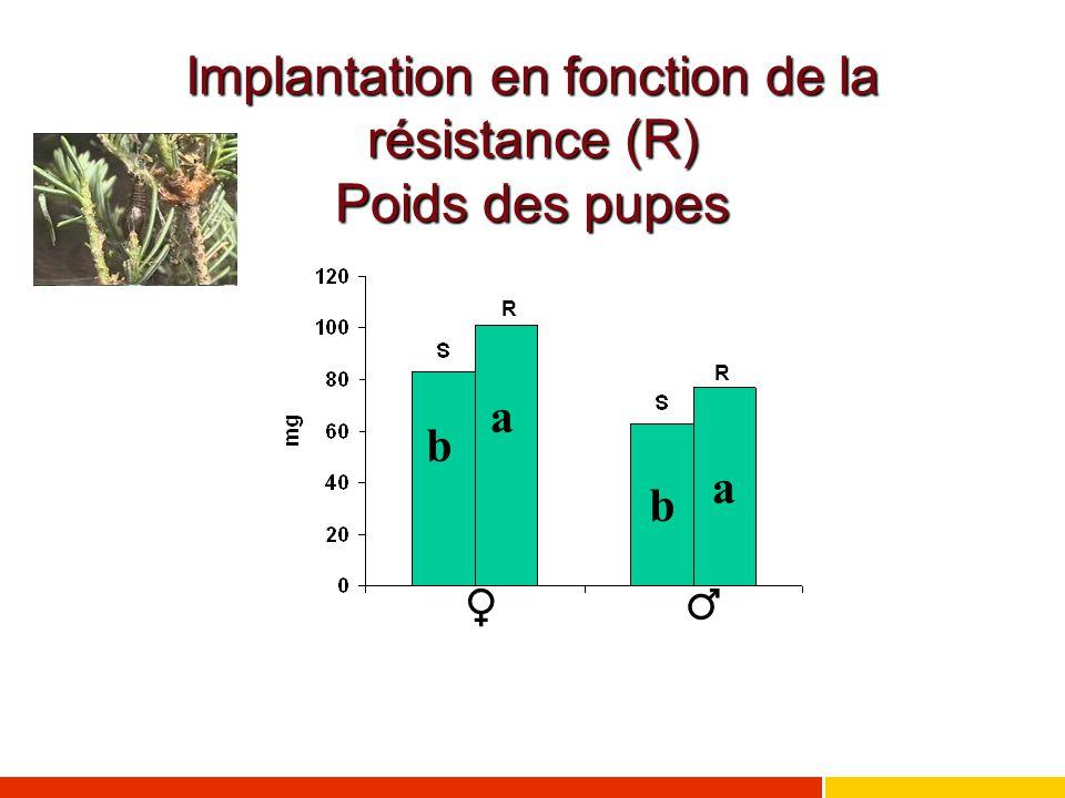 Implantation en fonction de la résistance (R) Poids des pupes