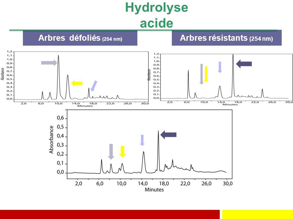 Arbres résistants (254 nm)