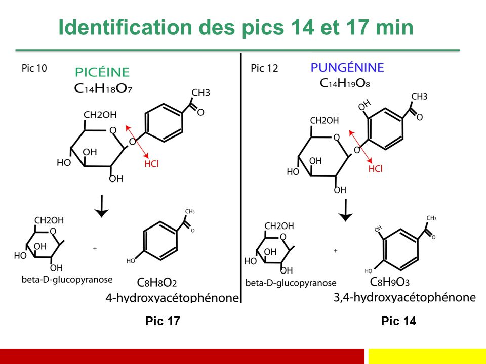 Identification des pics 14 et 17 min