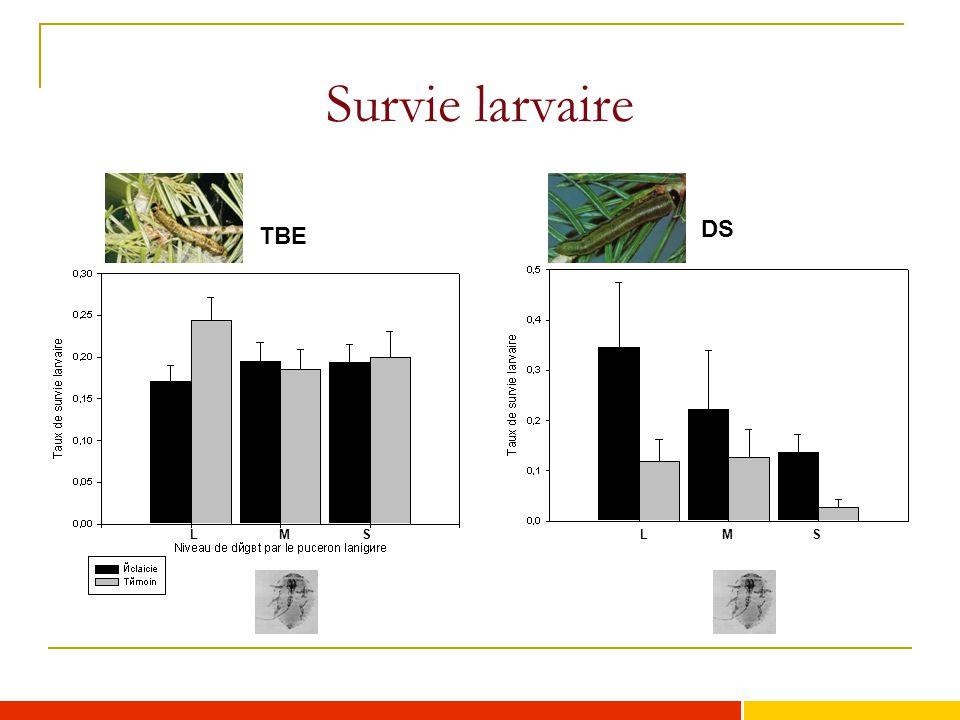 Survie larvaire DS TBE L M S L M S