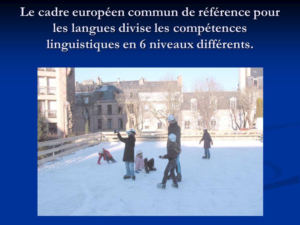 Le cadre européen commun de référence pour les langues divise les compétences linguistiques en 6 niveaux différents.