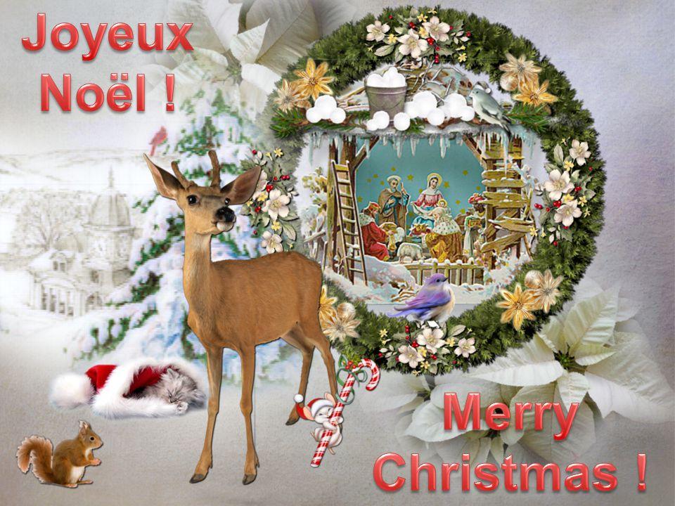 Joyeux Noël ! Merry Christmas !