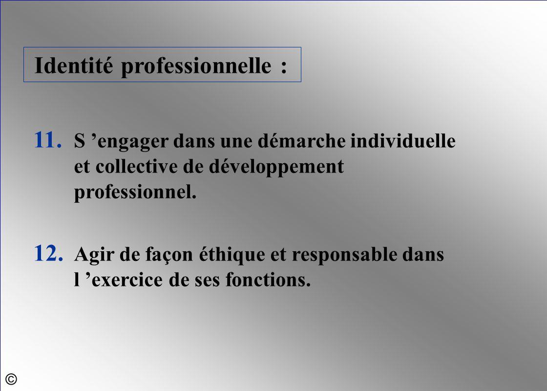 Identité professionnelle :