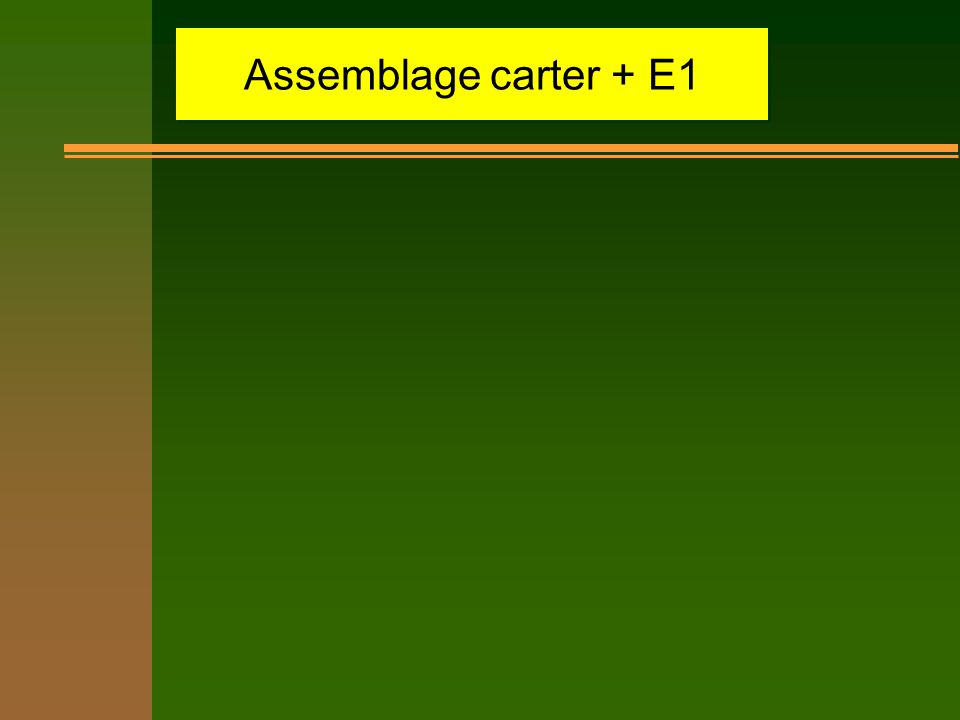 Assemblage carter + E1