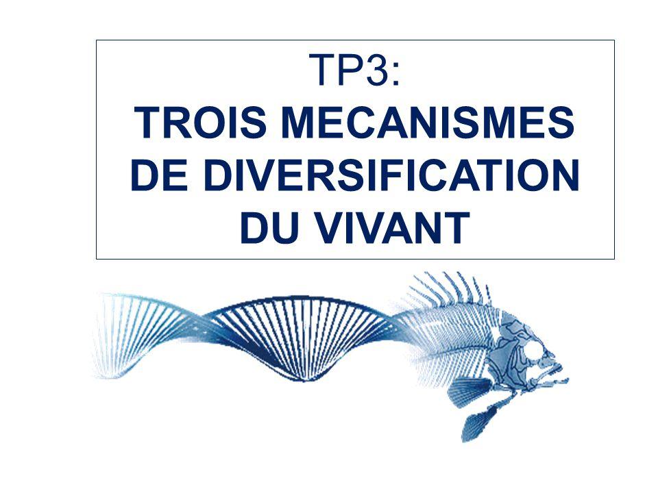 TROIS MECANISMES DE DIVERSIFICATION DU VIVANT