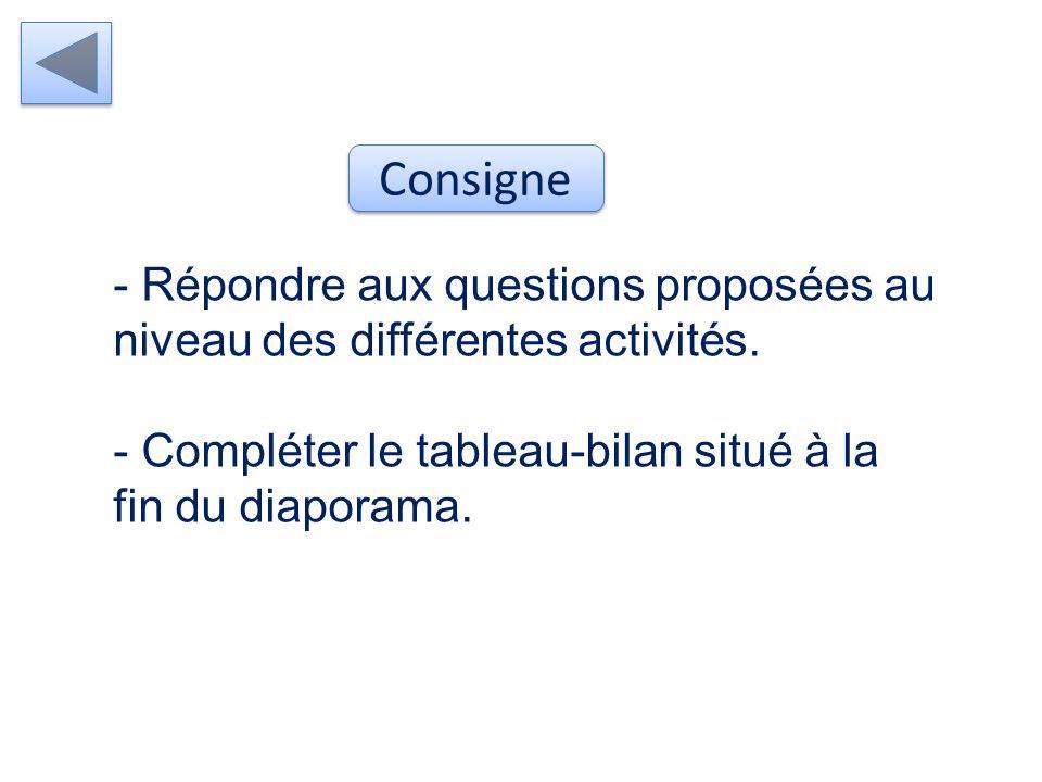 Consigne Répondre aux questions proposées au niveau des différentes activités.