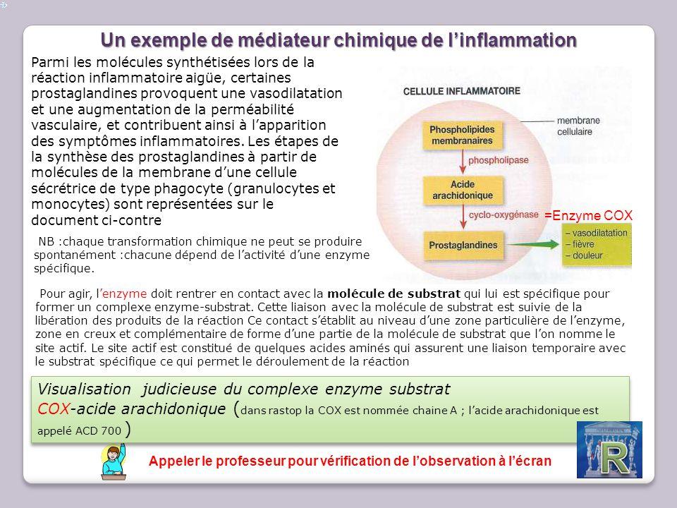 Un exemple de médiateur chimique de l'inflammation