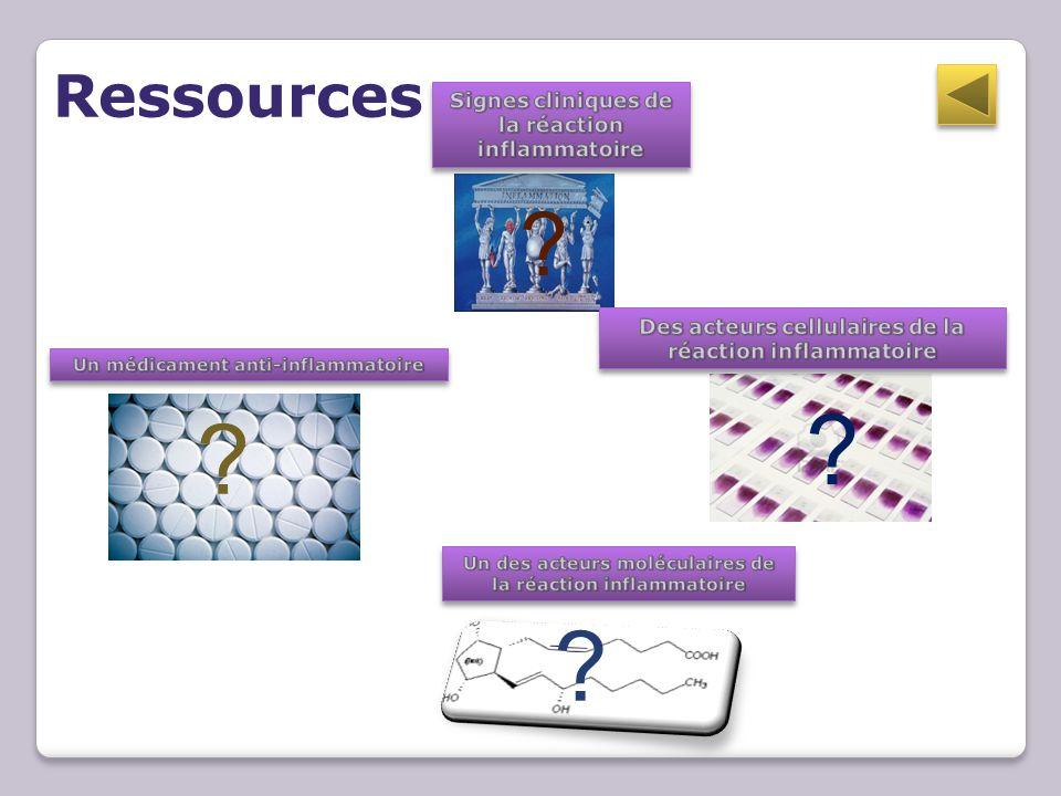 Ressources Signes cliniques de la réaction inflammatoire