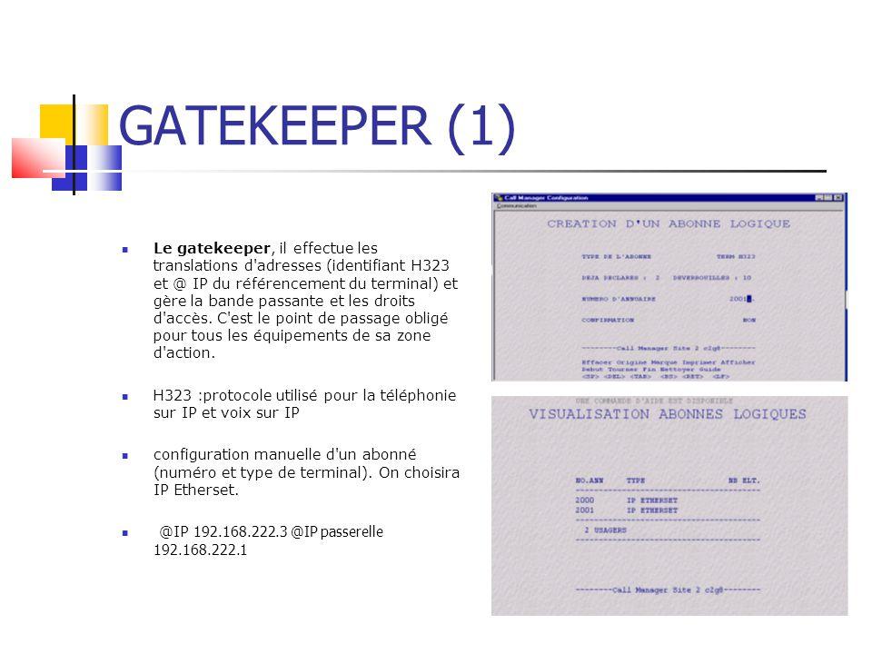 GATEKEEPER (1)
