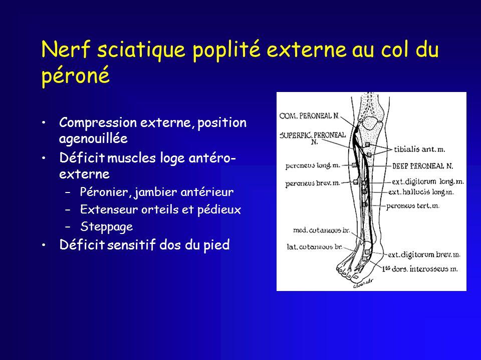 Nerf sciatique poplité externe au col du péroné