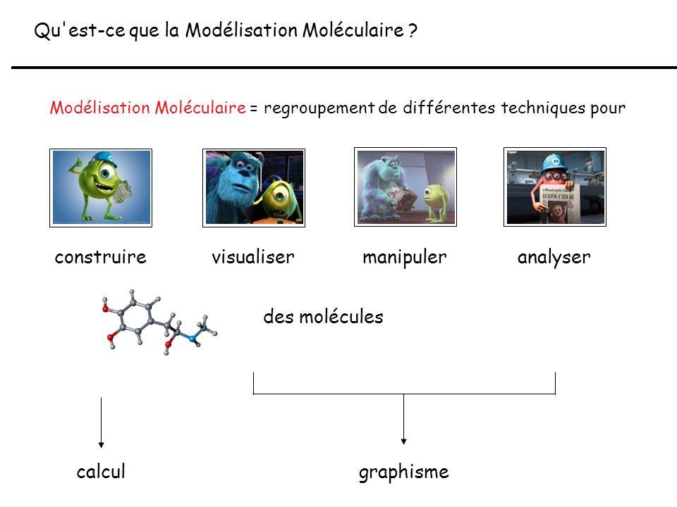 Qu est-ce que la Modélisation Moléculaire
