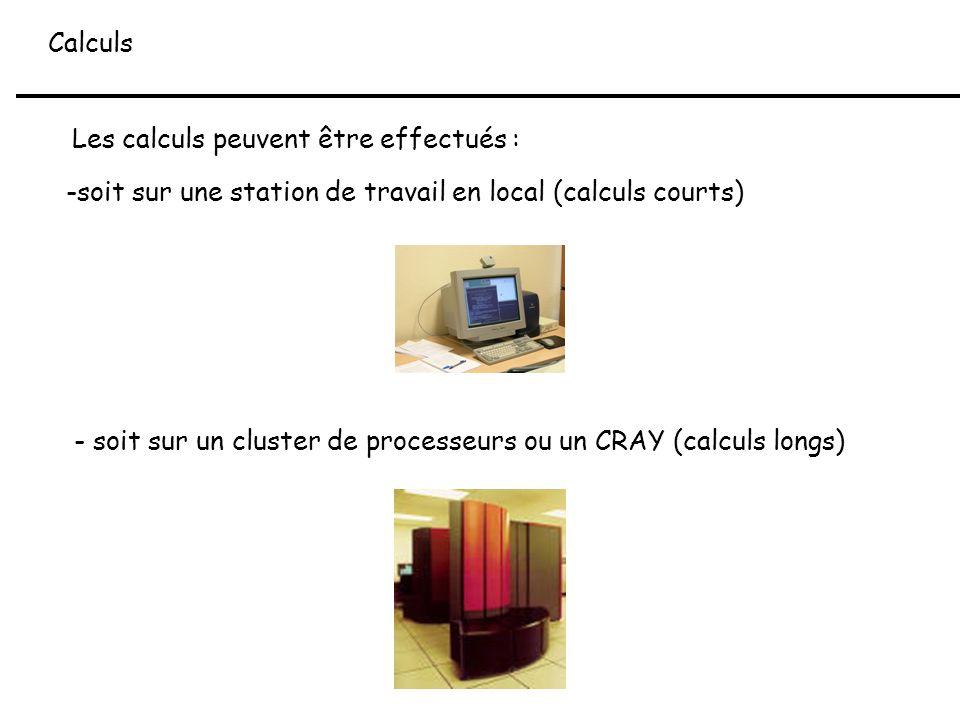 Calculs Les calculs peuvent être effectués : soit sur une station de travail en local (calculs courts)