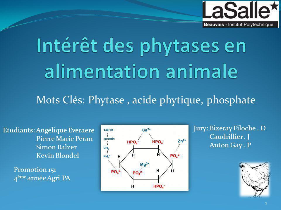 Intérêt des phytases en alimentation animale