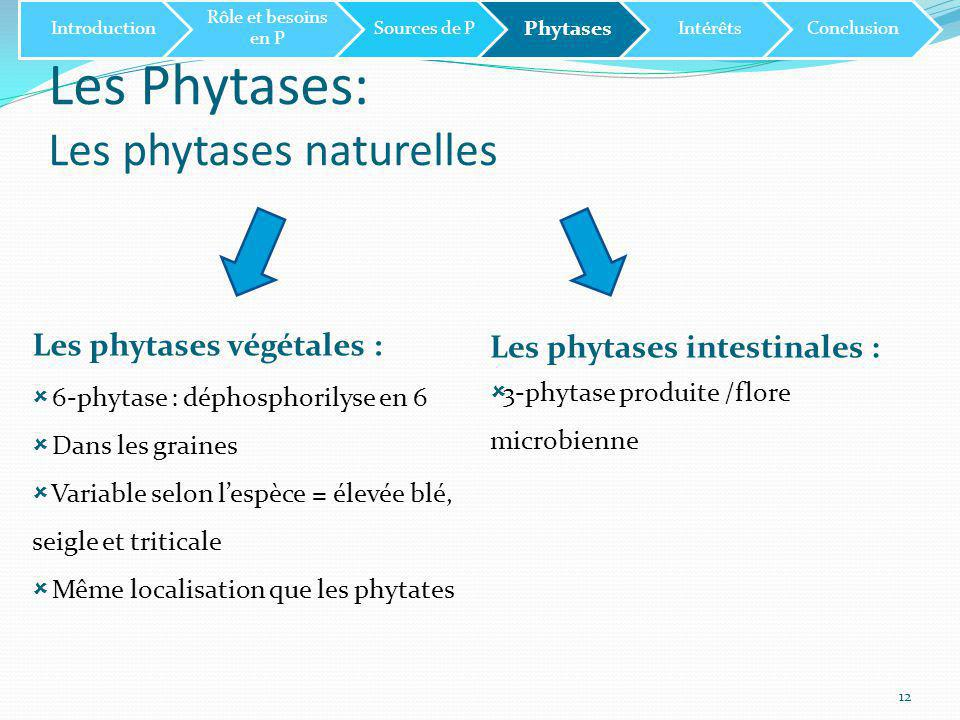 Les Phytases: Les phytases naturelles