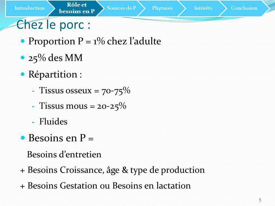 Chez le porc : Besoins en P = Proportion P = 1% chez l'adulte