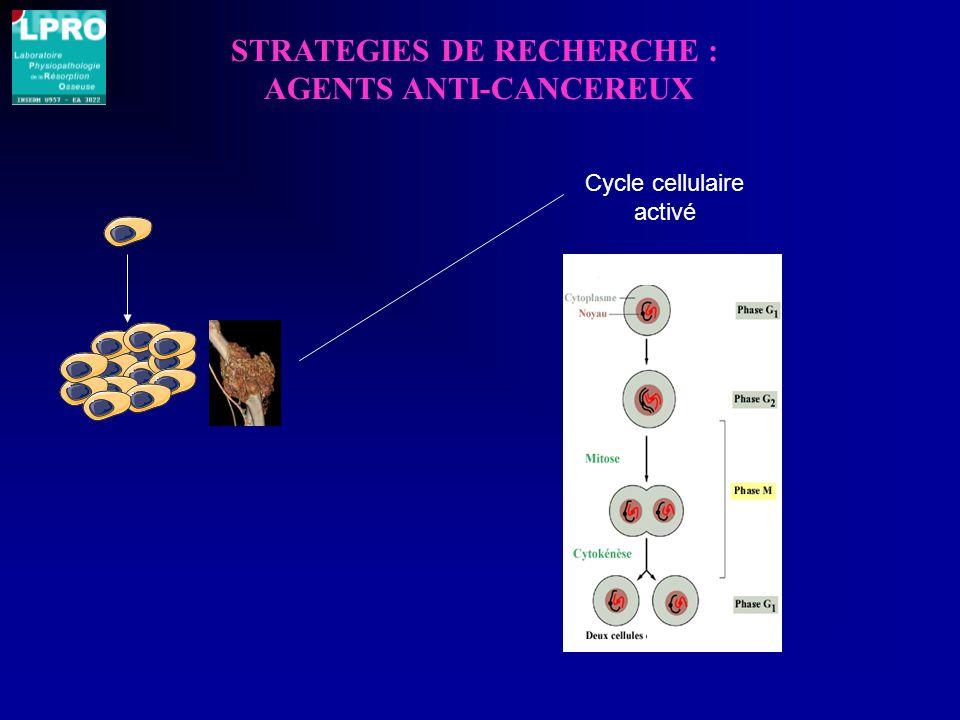 STRATEGIES DE RECHERCHE : AGENTS ANTI-CANCEREUX