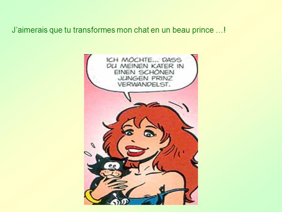 J'aimerais que tu transformes mon chat en un beau prince …!