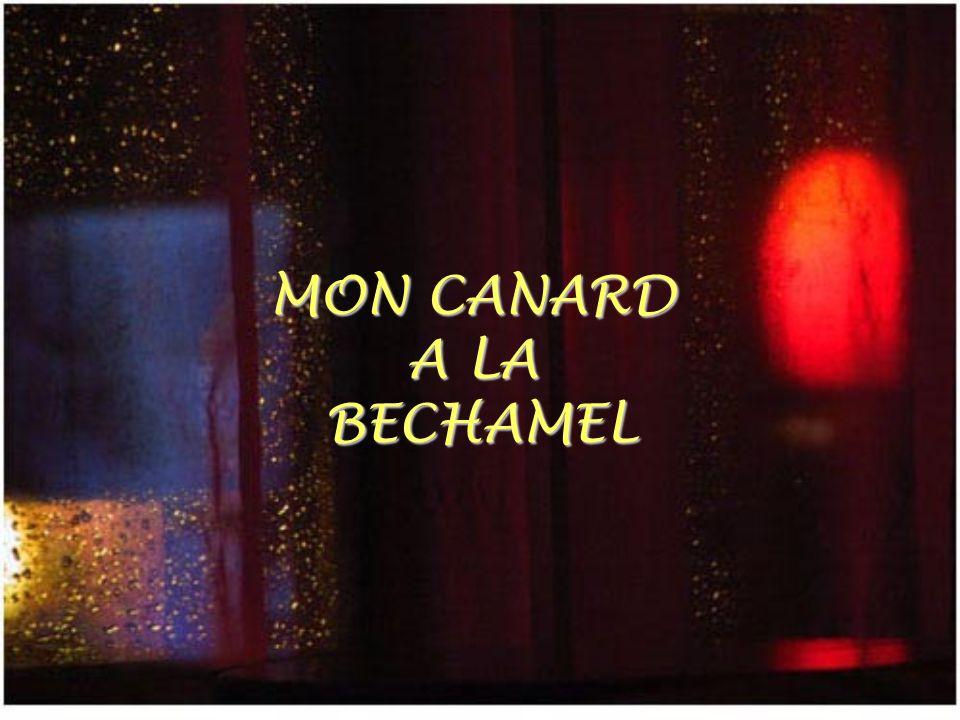 MON CANARD A LA BECHAMEL