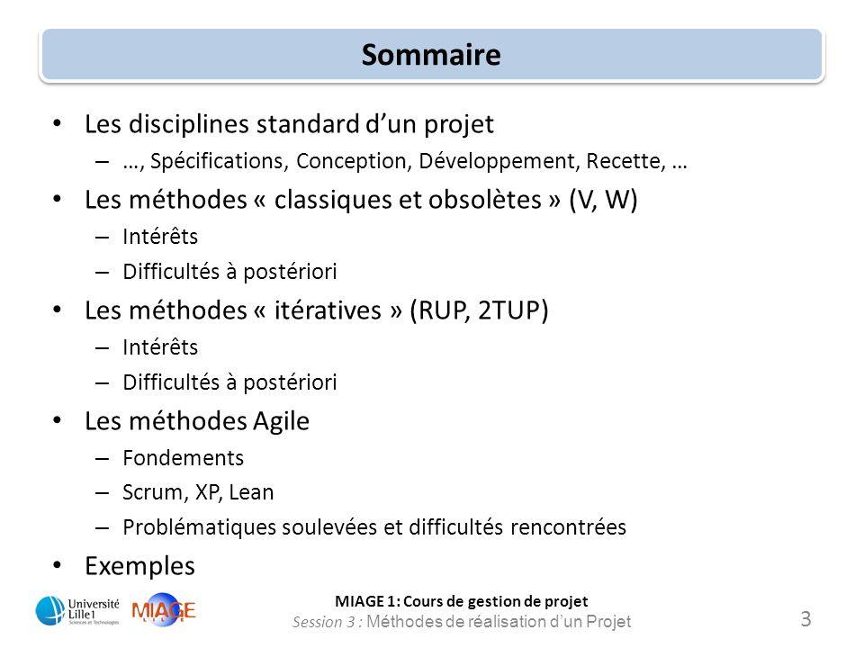 Sommaire Les disciplines standard d'un projet