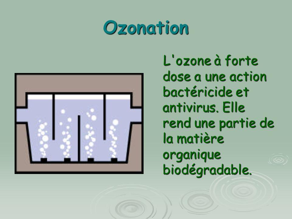 Ozonation L ozone à forte dose a une action bactéricide et antivirus.