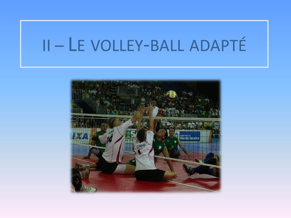 II – Le volley-ball adapté