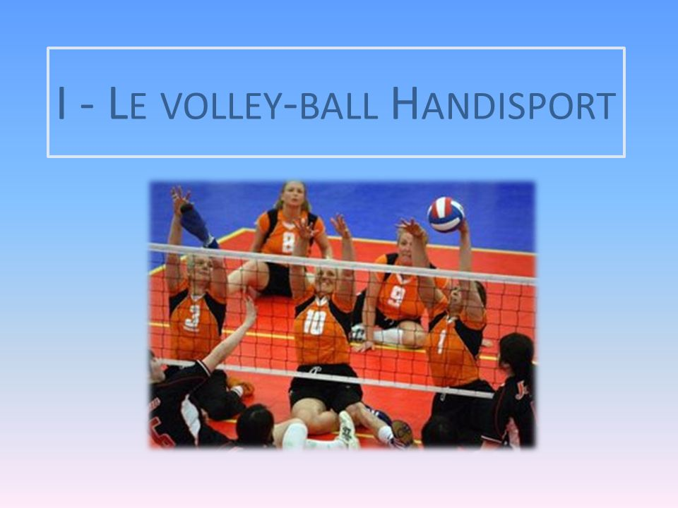 I - Le volley-ball Handisport