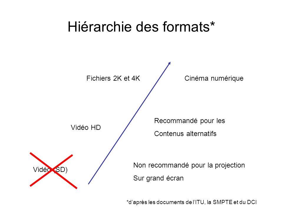 Hiérarchie des formats*
