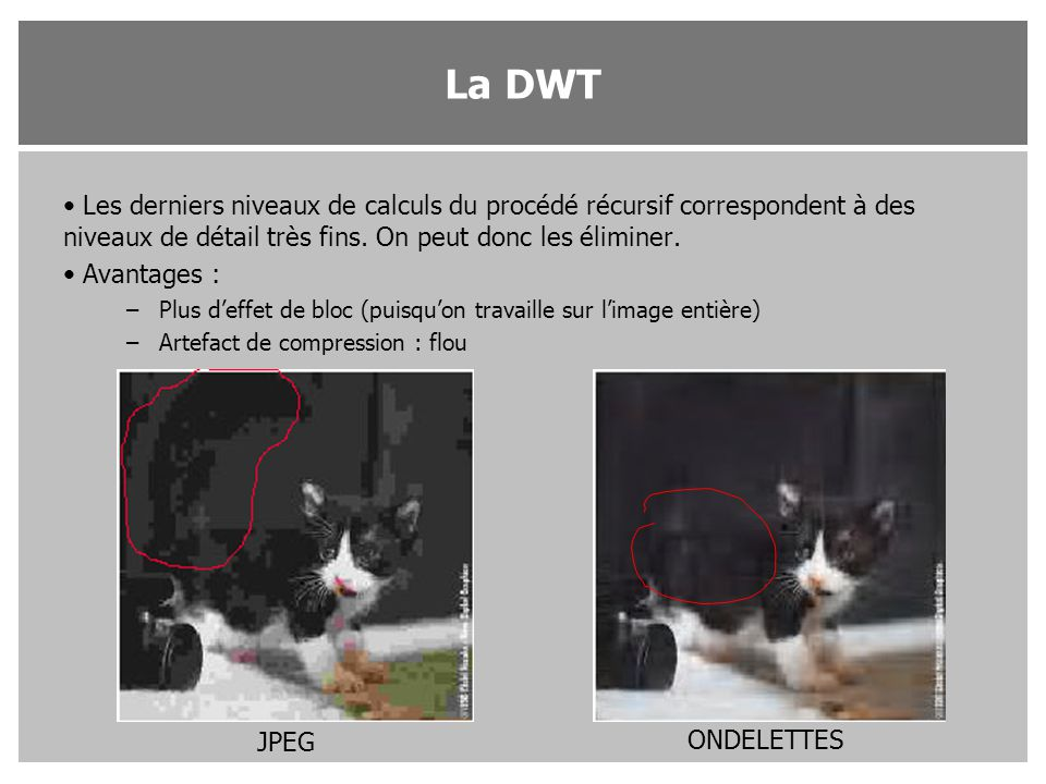 La DWT Les derniers niveaux de calculs du procédé récursif correspondent à des niveaux de détail très fins. On peut donc les éliminer.