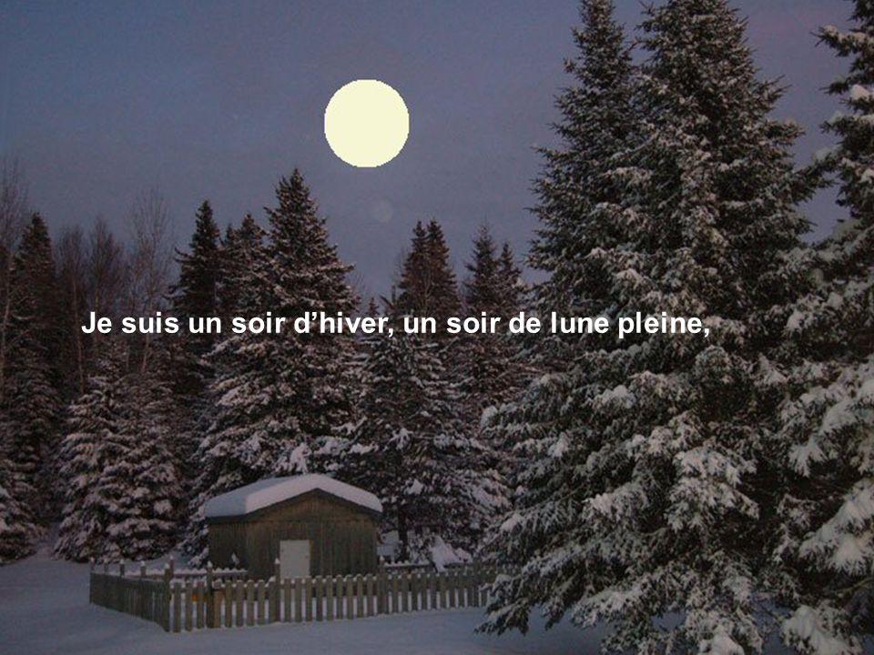 Je suis un soir d'hiver, un soir de lune pleine,