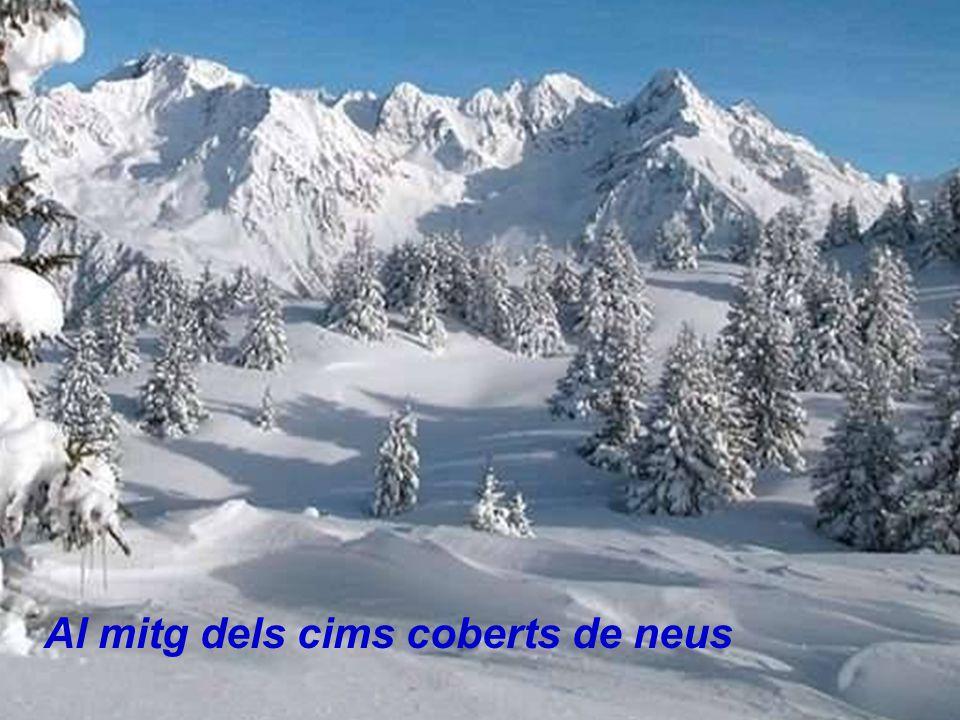 Al mitg dels cims coberts de neus